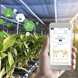 sensores-agricolas-inteligentes