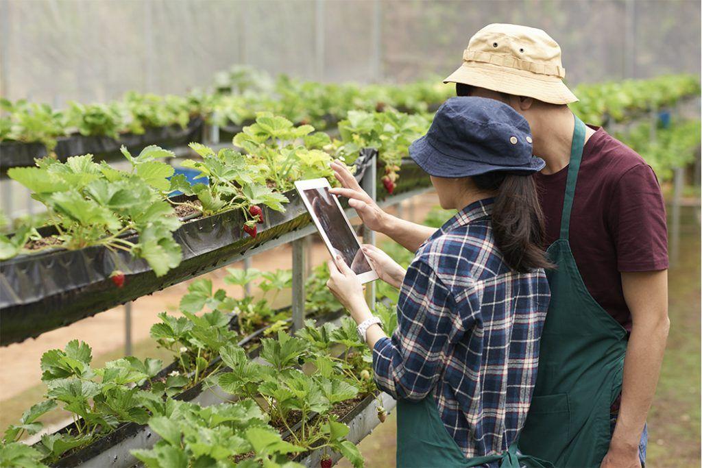 tendencias-tecnologia-agricola