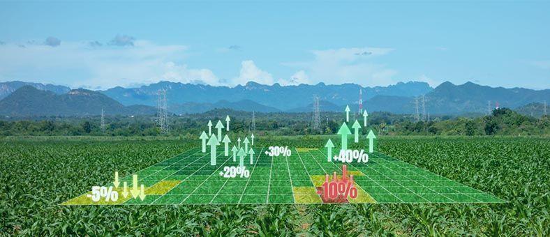agricultura-precision-digital